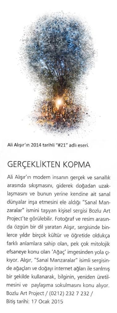 MilliyetSanat 010515